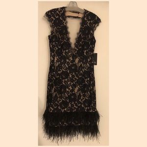 Aidan Mattox Lace / Feathers dress